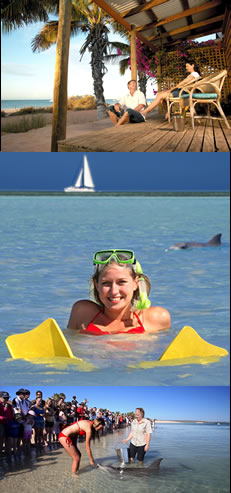 Monkey Mia Dolphin Resort - Accommodation Broome