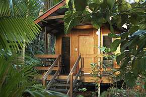 Cape Trib Beach House - Accommodation Broome