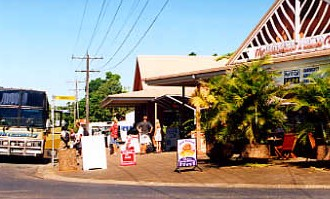Mission Beach Rainforest Motel - Accommodation Broome