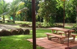 Virginia Heliconia Farm - Accommodation Broome