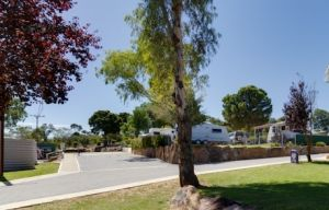 Avoca Dell Caravan Park - Accommodation Broome
