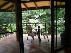 Cape Trib Exotic Fruit Farm Bed and Breakfast - Accommodation Broome