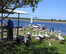 Mountain View Caravan and Mobile Home Village - Accommodation Broome
