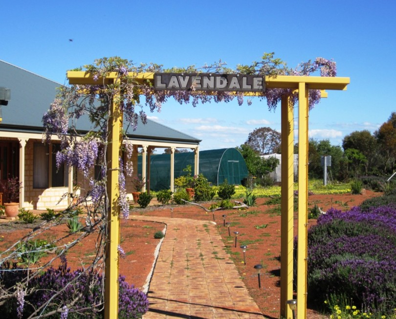 Lavendale Farmstay and Cottages - Accommodation Broome