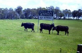 Cluan Homestead - Accommodation Broome