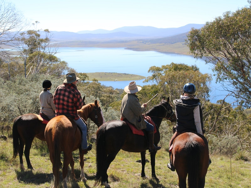Reynella Homestead and Horseback Rides - Accommodation Broome