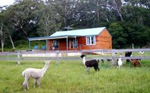 Moorallie Cottage Farm Stay - Accommodation Broome