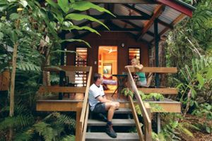 Cape Tribulation  - Accommodation Broome