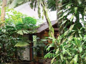 Heritage Lodge and Spa - In the Daintree - Accommodation Broome