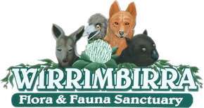 Wirrimbirra Sanctuary - Accommodation Broome