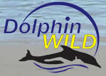 Dolphin Wild - Accommodation Broome