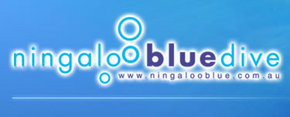 Ningaloo Blue Dive - Accommodation Broome