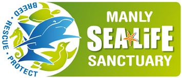 Manly SEA LIFE Sanctuary - Accommodation Broome