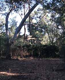 Ghost House Walk Trail Yanchep National Park - Accommodation Broome
