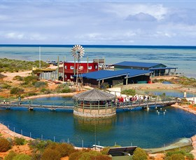 Ocean Park Aquarium - Accommodation Broome