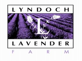 Lyndoch Lavender Farm and Cafe - Accommodation Broome