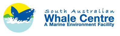 South Australian Whale Centre - Accommodation Broome