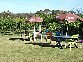 Cerise Brook Orchard  Family Golf - Accommodation Broome