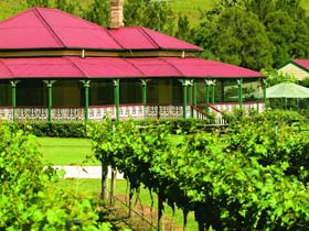 OReillys Canungra Valley Vineyards - Accommodation Broome