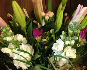 Alpine Blooms Florist Mansfield - Accommodation Broome