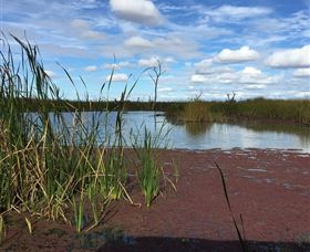 Gwydir Wetlands - Accommodation Broome