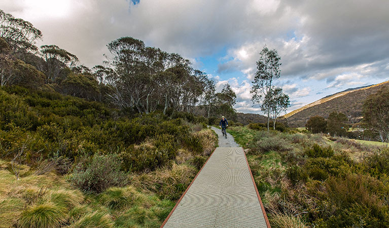 Thredbo Valley track - Accommodation Broome