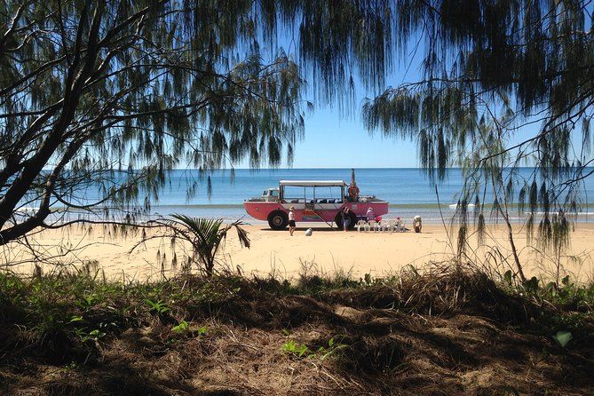 1770 Coastline Tour by LARC Amphibious Vehicle Including Picnic Lunch - Accommodation Broome