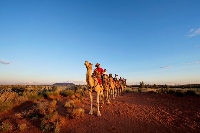Uluru Camel Express Sunrise or Sunset Tours - Accommodation Broome
