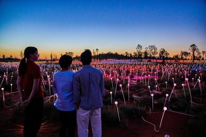 Uluru Field of Light Sunrise Tour - Accommodation Broome