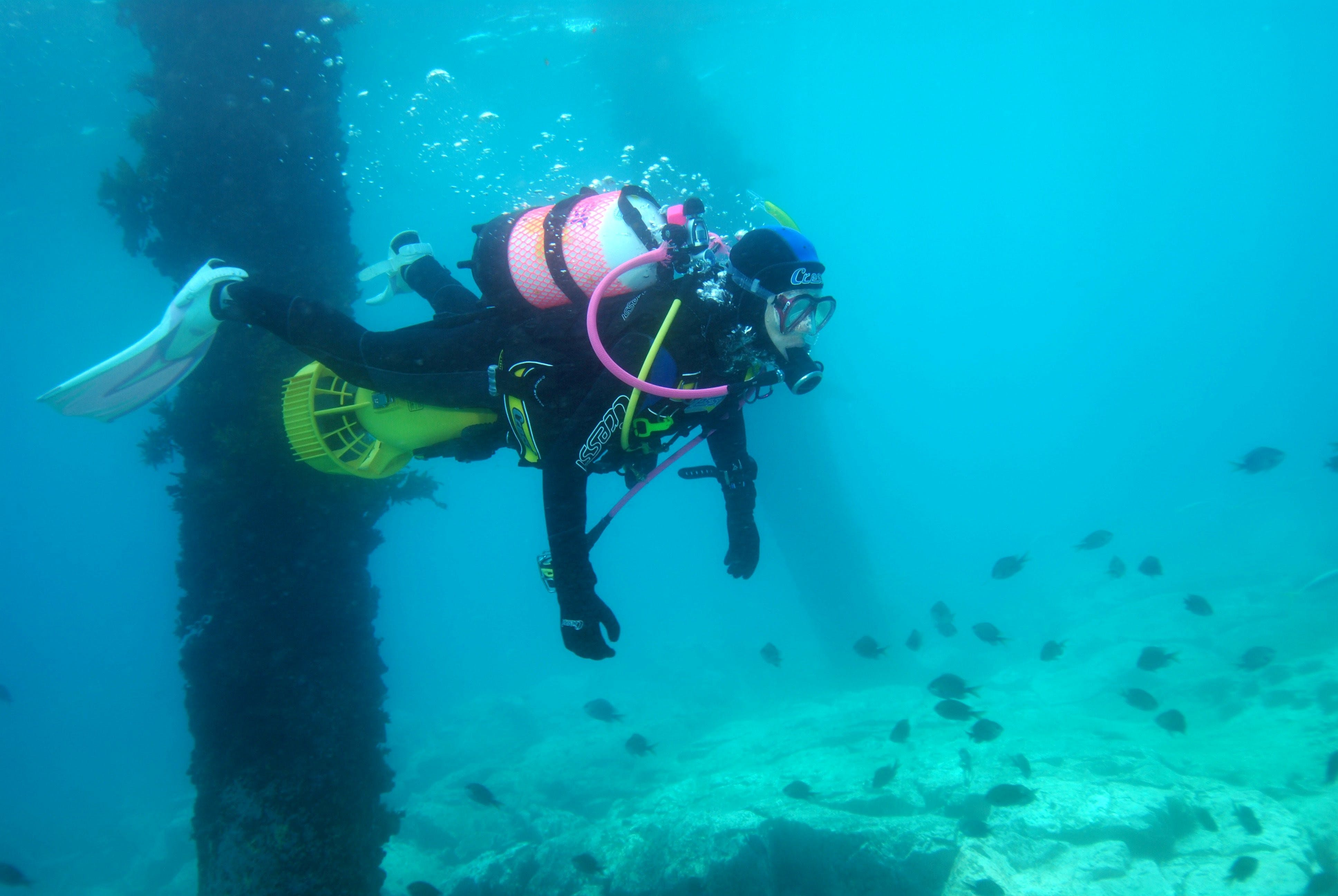 Shellharbour Scuba  and Photography Centre - Accommodation Broome