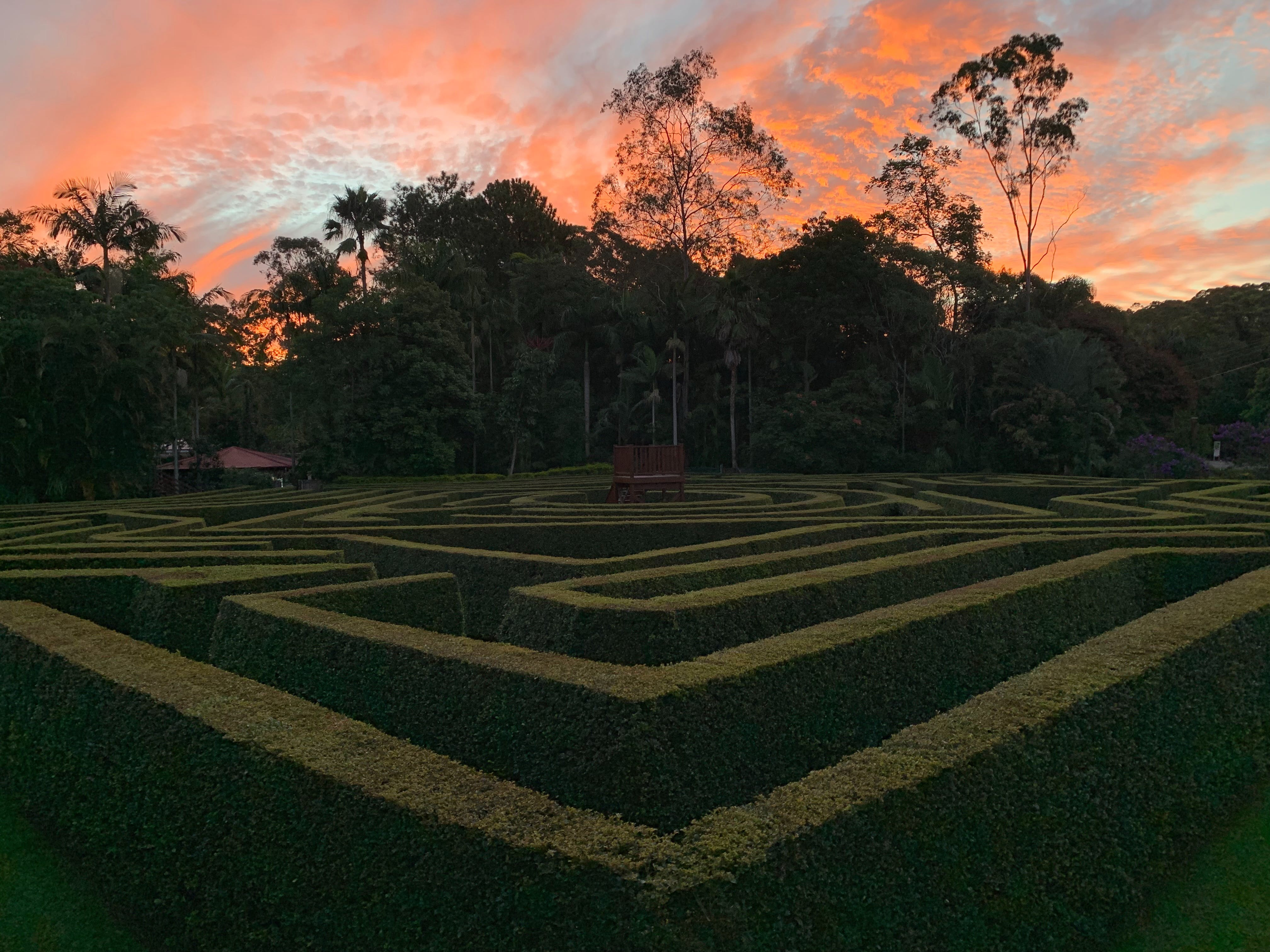 Bellingham Maze - Accommodation Broome
