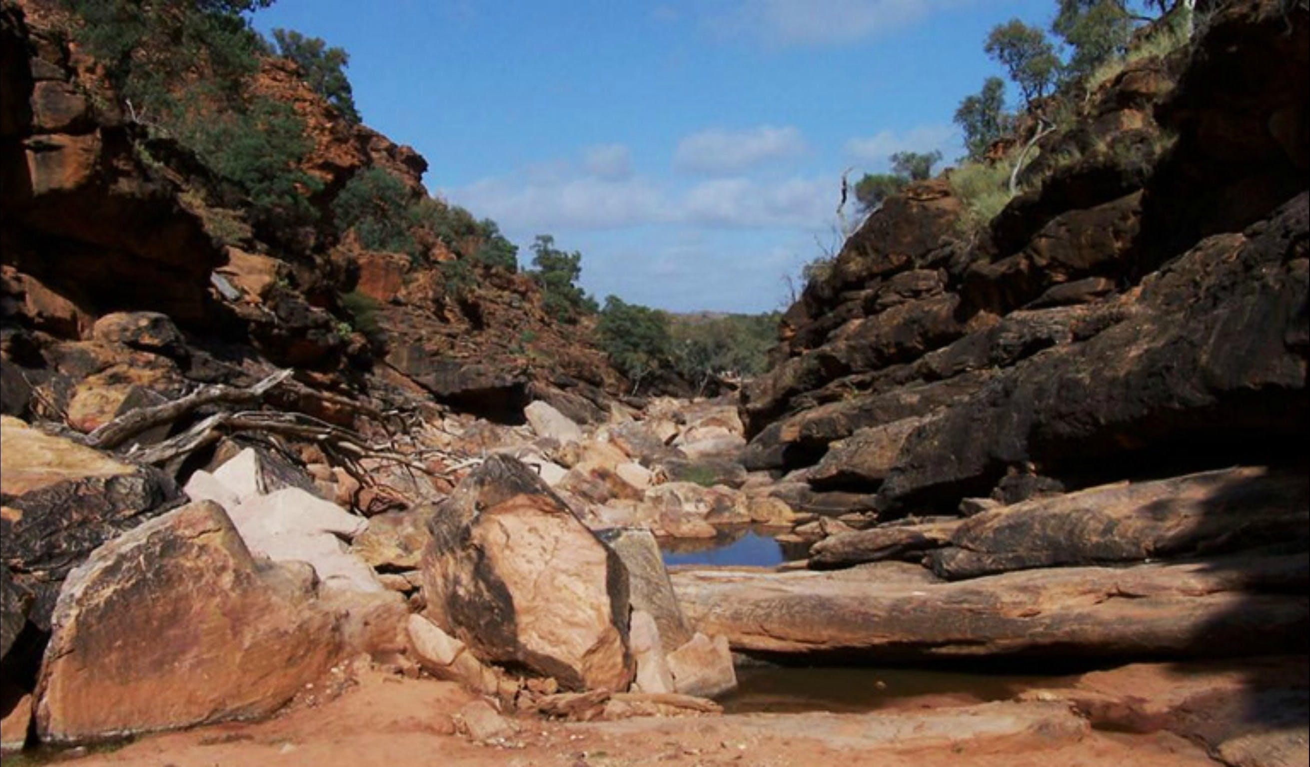 Homestead Gorge trail - Accommodation Broome