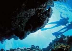 Deep Sea Divers Den - Accommodation Broome