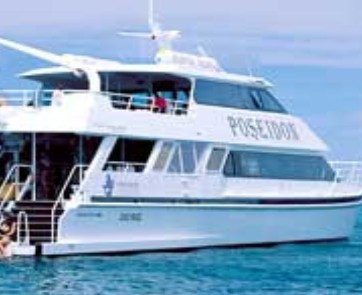 Poseidon Outer Reef Cruises - Accommodation Broome
