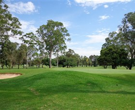 Singleton Golf Club - Accommodation Broome