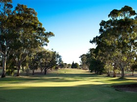 Loxton Golf Club - Accommodation Broome