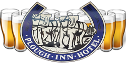 Plough Inn Hotel - Accommodation Broome