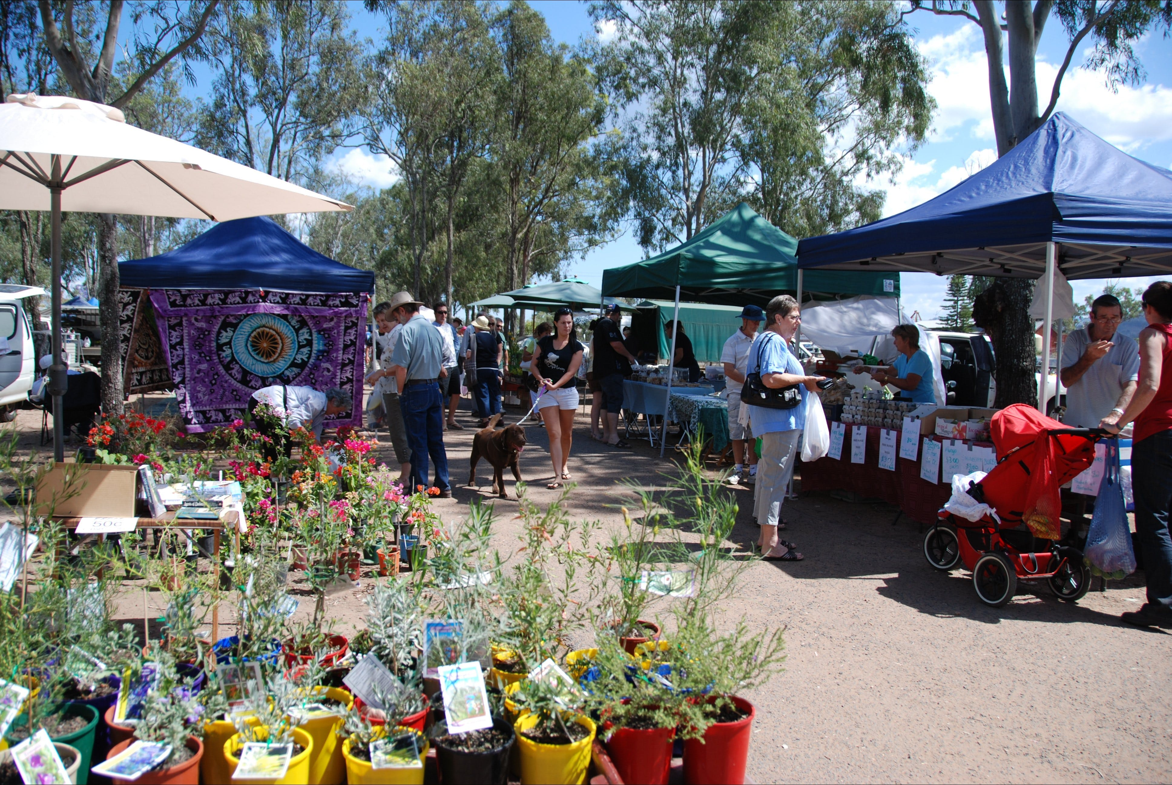 Fernvale Country Markets - Accommodation Broome
