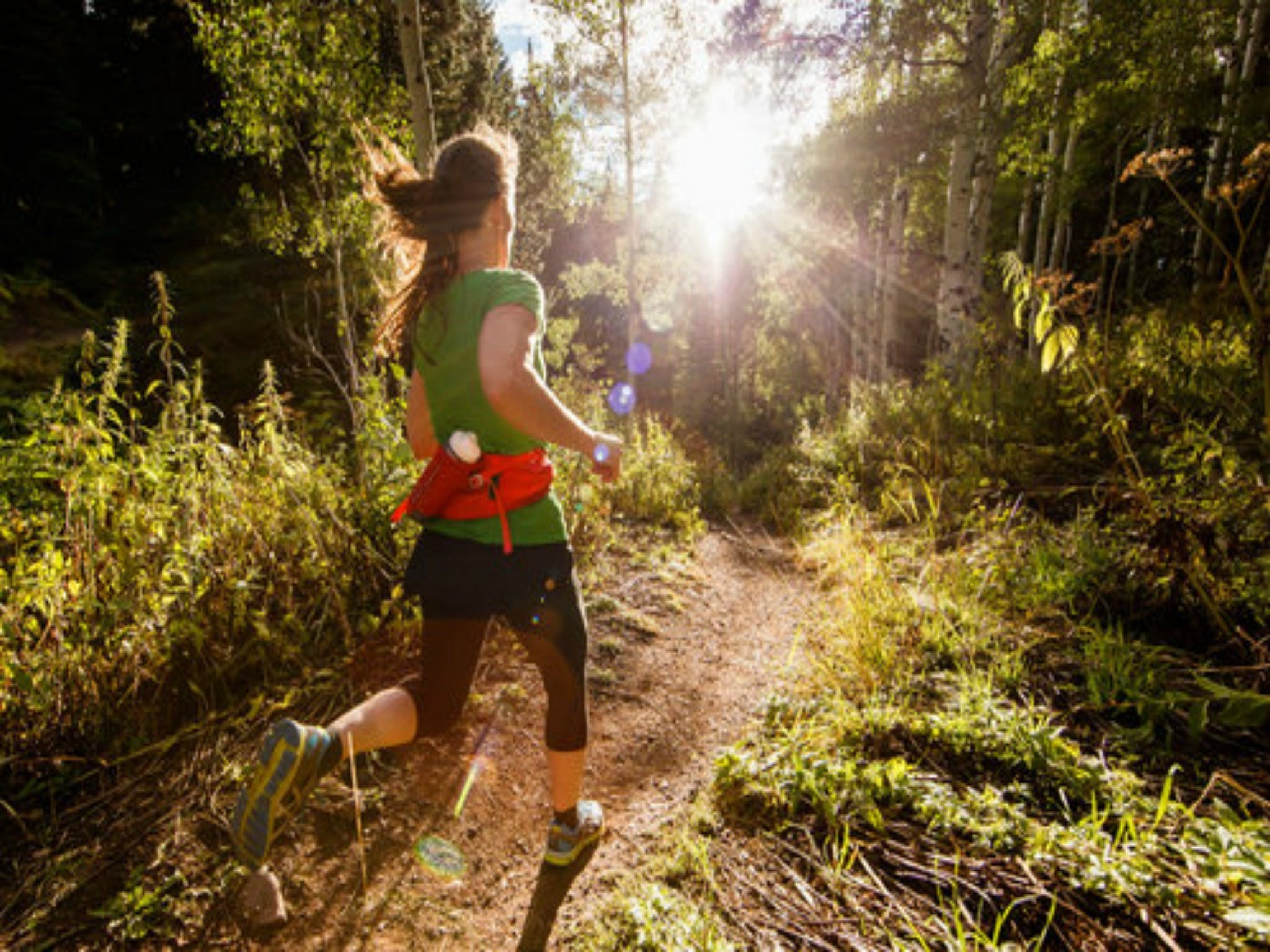 Run Dungog - Accommodation Broome
