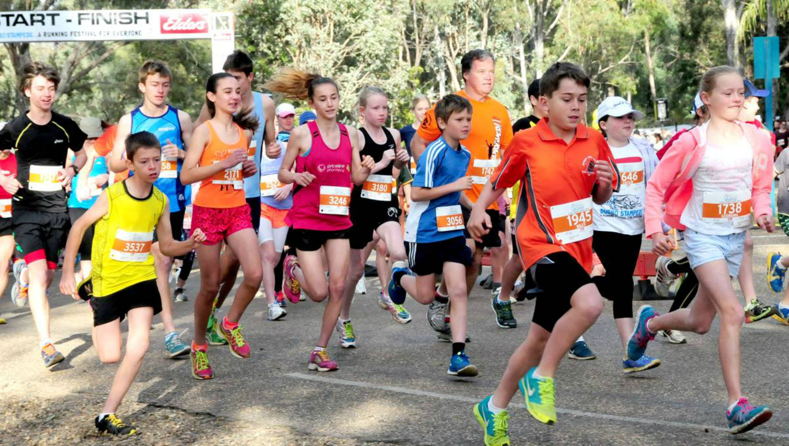 MAAS Group Dubbo Stampede Running Festival - Accommodation Broome