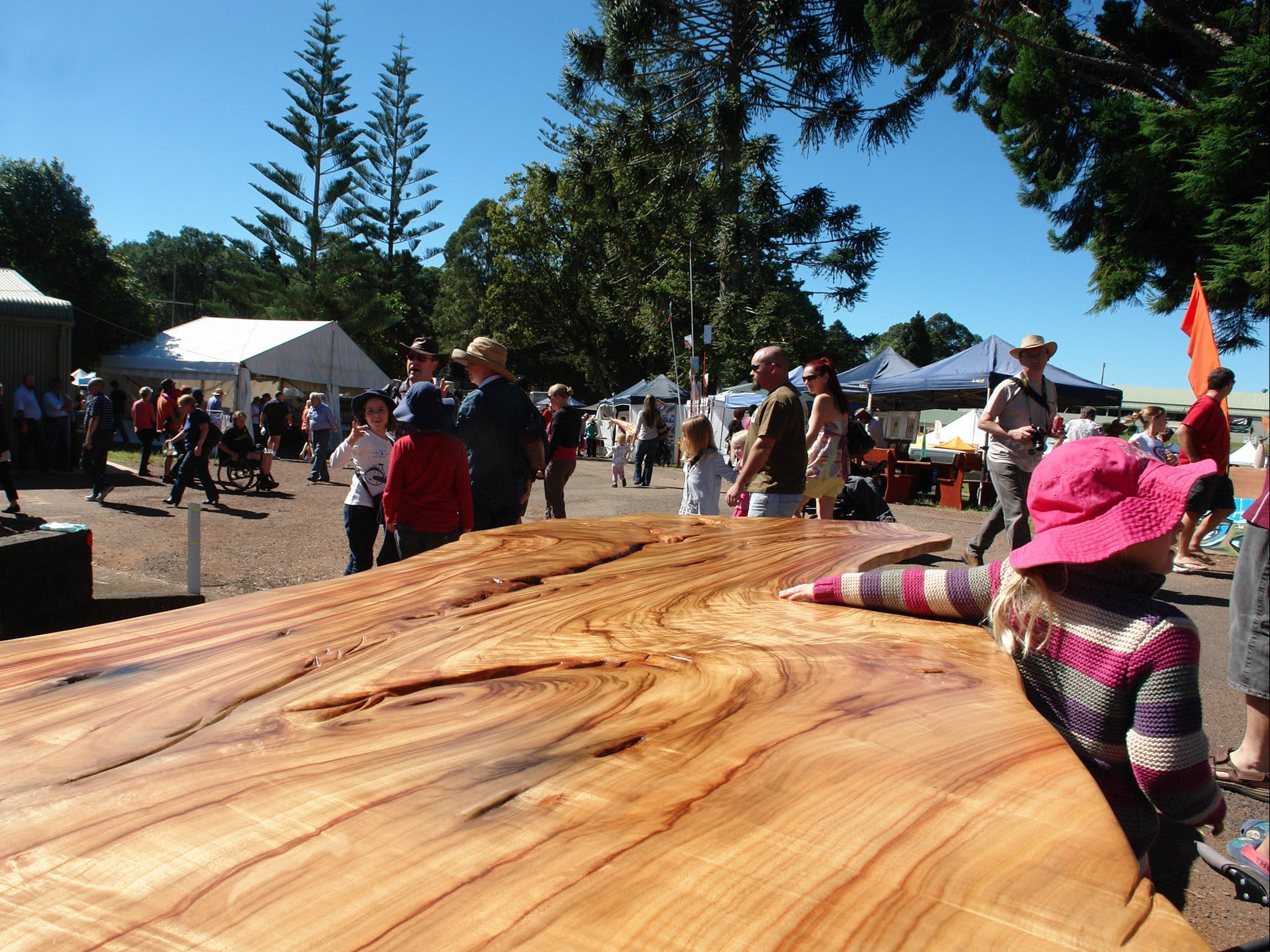 Maleny Wood Expo From Seed to Fine Furniture - Accommodation Broome