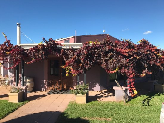 Jester Hill Wines - Accommodation Broome